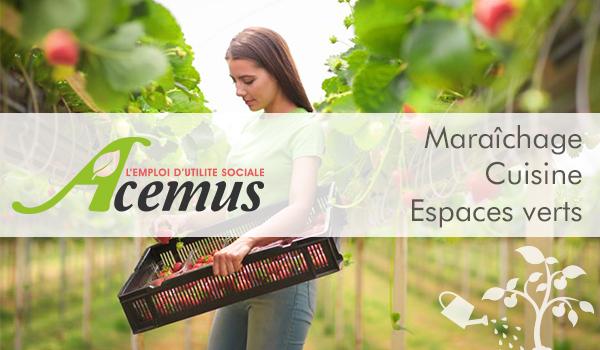 En savoir + sur Acemus